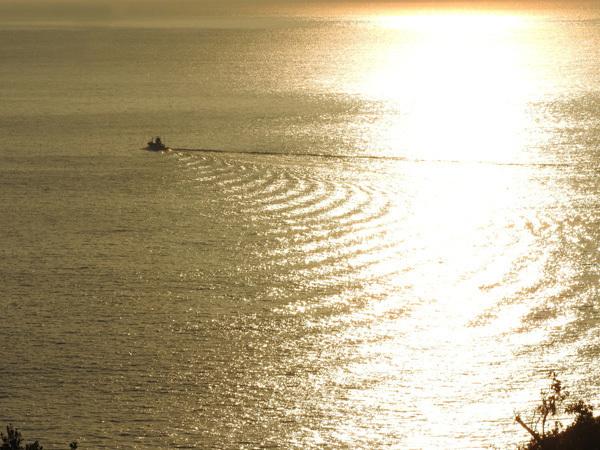 0315海の波紋3054R.jpg
